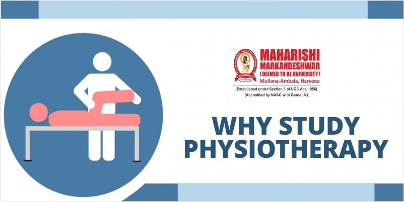 Magnetic Reasons to Study Physiotherapy